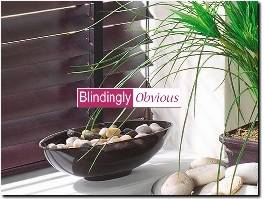 https://www.blindinglyobvious.co.uk website