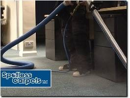 http://spotless-carpets.com/ website