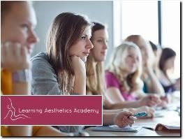 http://learningaestheticsacademy.com website
