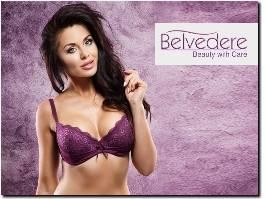 http://www.belvedereclinic.co.uk/ website