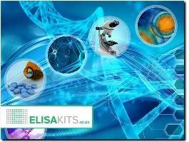 http://www.elisakits.co.uk/ website