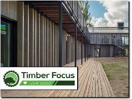 https://timberfocus.com/ website
