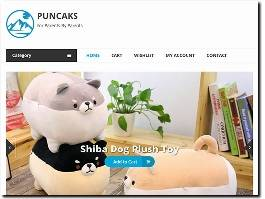 https://www.puncaks.com/ website