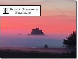 https://holy-island.uk website
