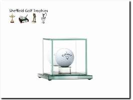 https://golftrophy.co.uk/ website