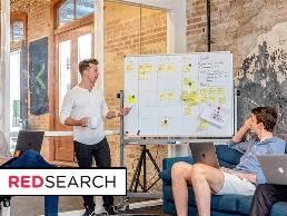 https://www.redsearch.com.au/seo-sydney/ website