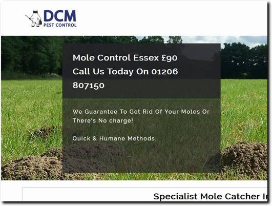 https://www.mole-catcher-essex.co.uk/ website
