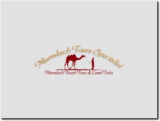 https://marrakech-tours-specialist.com/en/ website