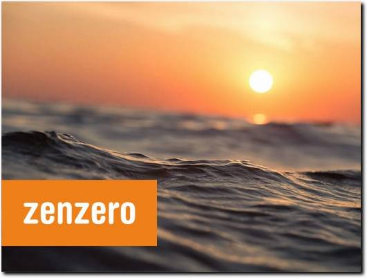 https://zenzero.co.uk/ website