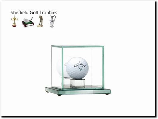 https://golftrophy.co.uk/ website