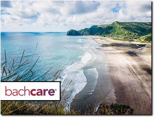 https://www.bachcare.co.nz/ website