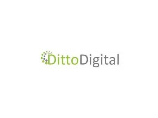 https://dittodigital.co.uk website