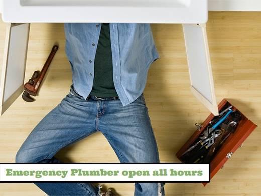 https://emergency-plumber-open-all-hours.business.site/ website